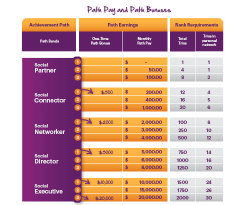 Solavei payment structure